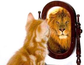 кот-лев